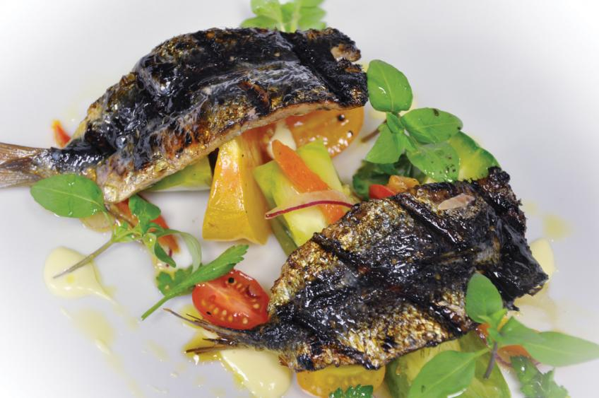 Celebrating Sustainable Seafood