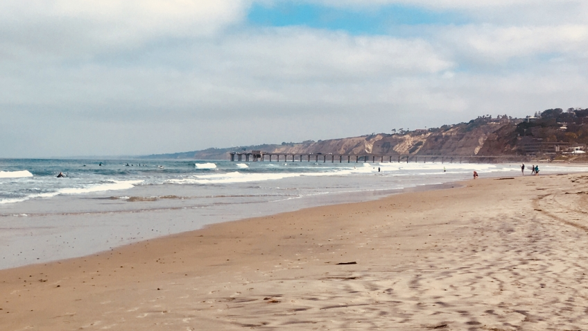 La Jolla Beach Cleanup & Happy Hour