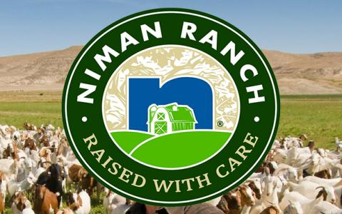 Visit to Niman Cattle Ranch